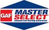 Master Select Logo Edit